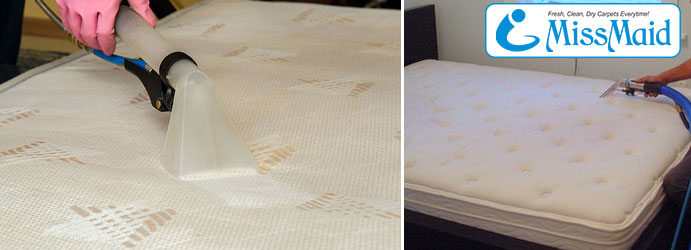 Professional Mattress Cleaners