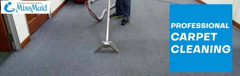 Professional Carpet Cleaning Martinsville