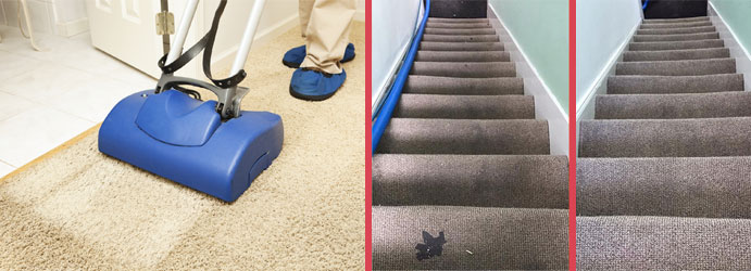 Capet Stain Removal Services Canberra