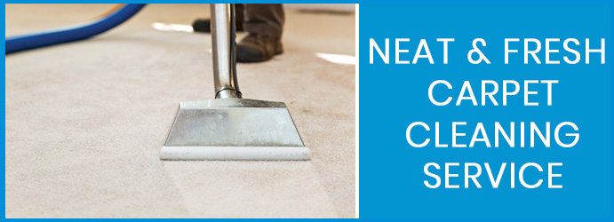 Neat and Fresh Carpet Cleaning Service