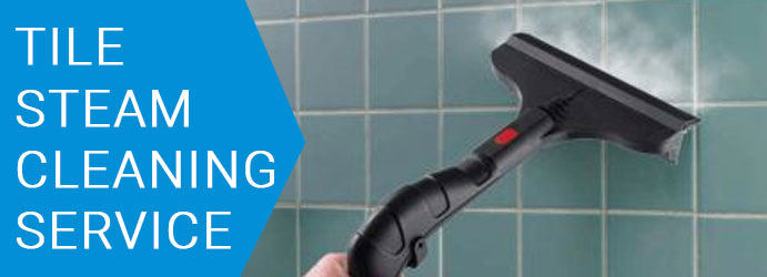Tile Steam Cleaning Service