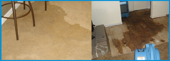 flood and Water Damage Carpet Cleaning